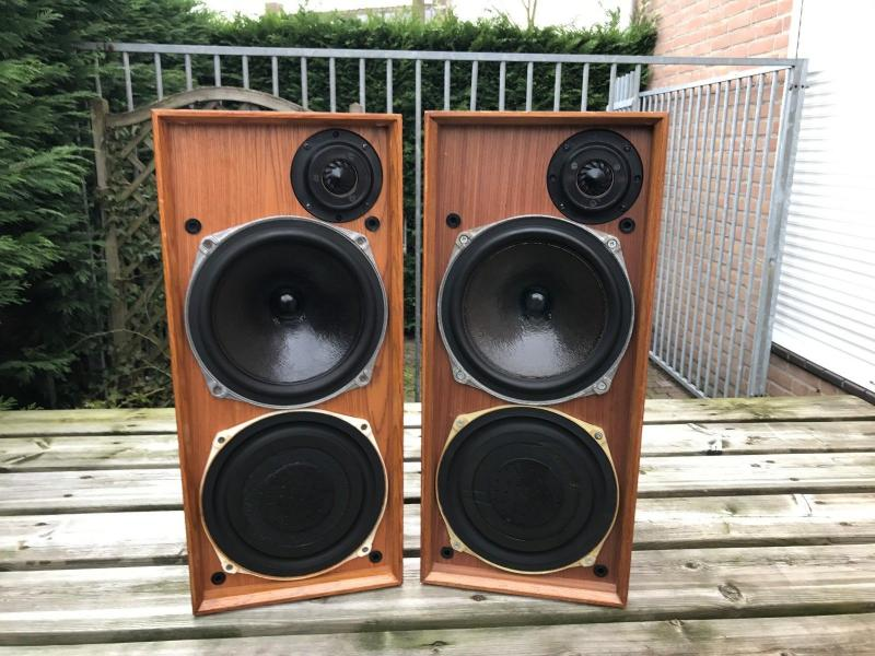Celestion Ditton 15